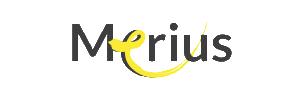 Merius Hypotheken logo - Huidige hypotheekrente